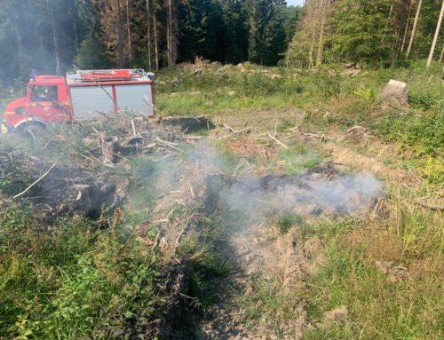 Harth: Flächenbrand im Ringelsteiner Wald